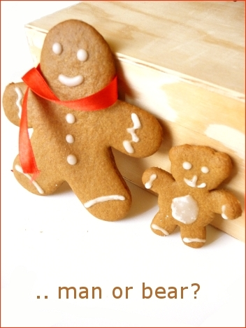 gingerbreadman22