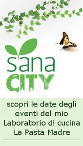 sanacity2014-2